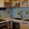 Фартух для кухні з пластика: красиво і недорого