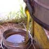 Відкачування меду