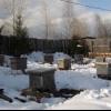 Допомога неблагополучним бджолосімей навесні