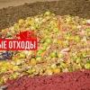 Правила утилізації харчових відходів
