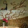Прийоми оформлення стін на кухні
