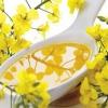 Рапсове масло: все властивості, користь і шкода