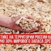 Способи переробки деревини