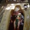 Трави для прийняття ванни