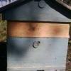 Догляд за бджолами в 12- рамковому вулику з надставками